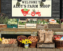 Algys Farm Shop, Bintree, Norfolk