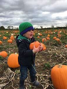 Pumpkin Picking at Algy's