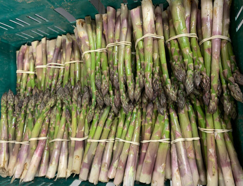 What's in Season at Algy's Farm Shop